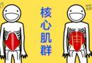 核心肌群的由來(by 鄭宇劭物理治療師)